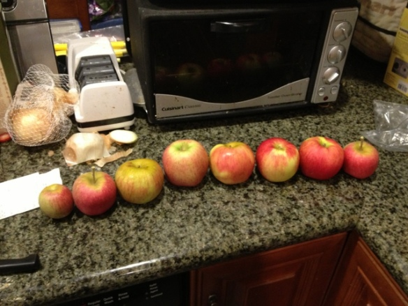 Apples, home grown and store bought